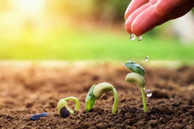 Valori di Agriturismo Aria Fina